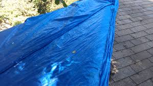 blue tarped roof after irma